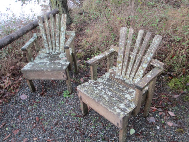 Chairs on Whidbey Island